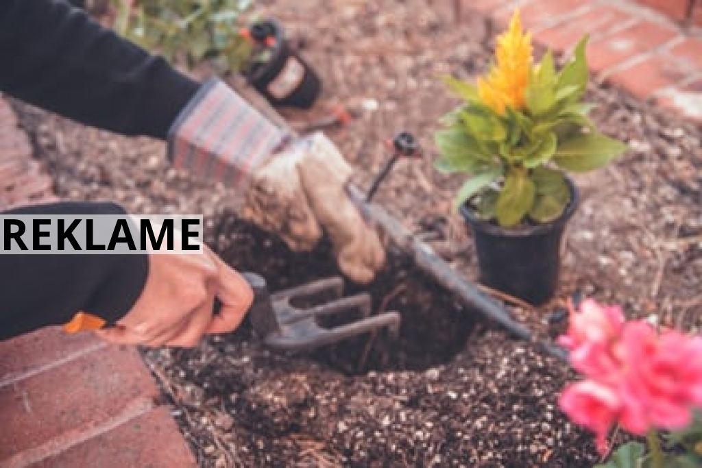 Sådan får du mere brug ud af din have