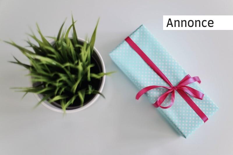 Sådan finder du en god gave til din søn